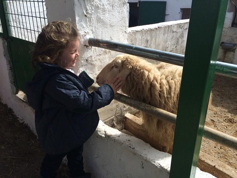 Excursión de Infantil a la Granja Escuela (Orvalle 18)