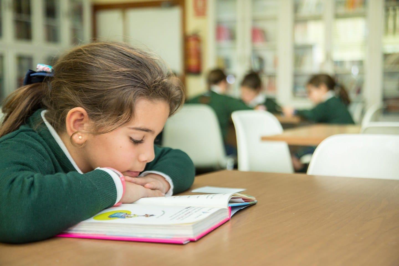 biblioteca-colegioorvalle