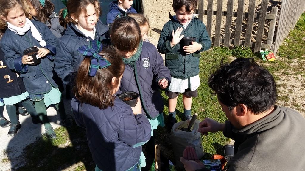 huerto-niños-colegio-madrid (12)