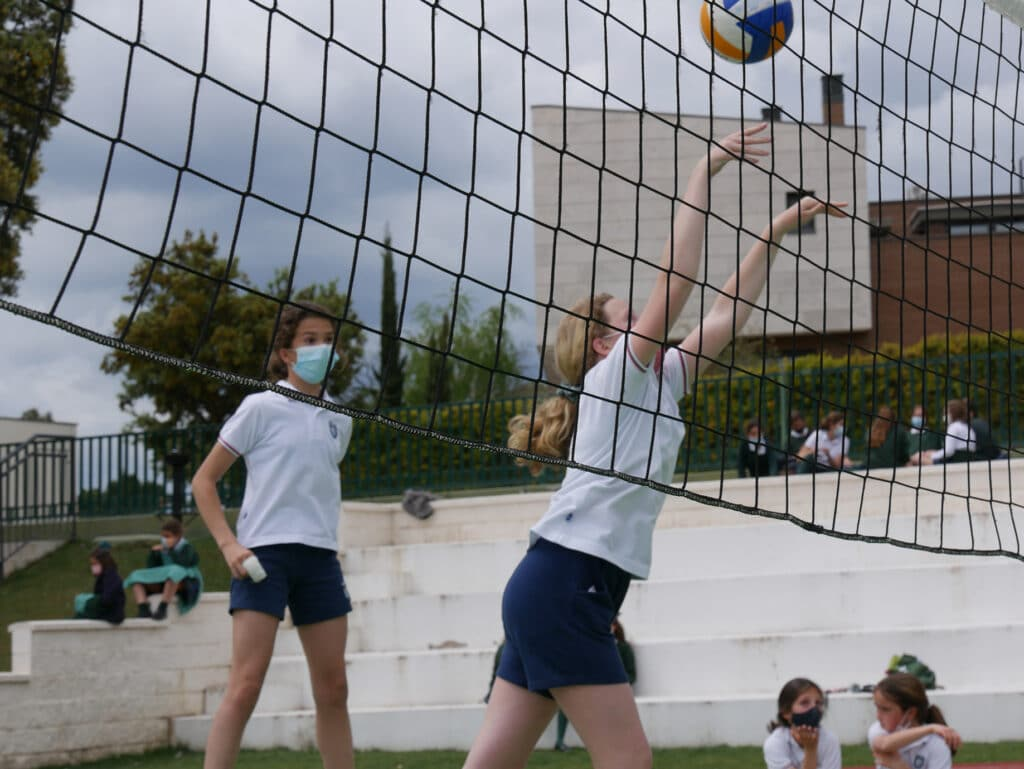 volleyball orvalle