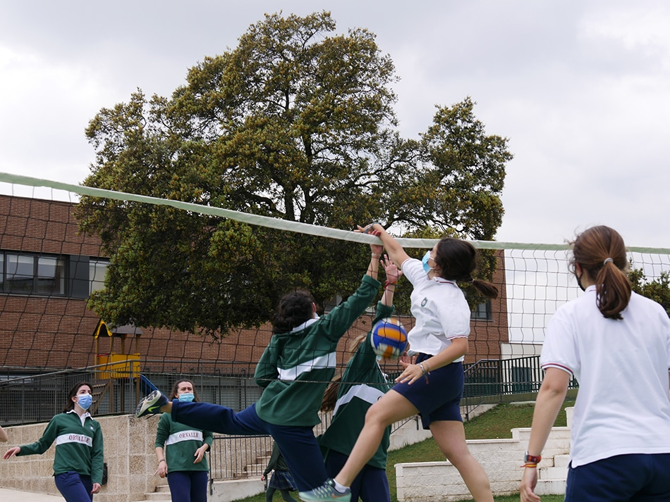 voley orvalle